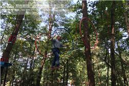 树上探险-穿越时空