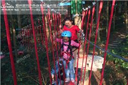 树上探险-吊桩
