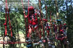 树上探险-脚踏飞燕