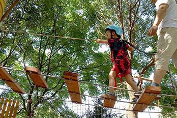 湖南普罗旺斯幼儿园树上探险项目