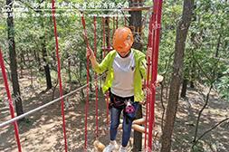 青少年营地千赢平台官网-树上探险区