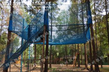 南湾湖森林魔网项目已建成
