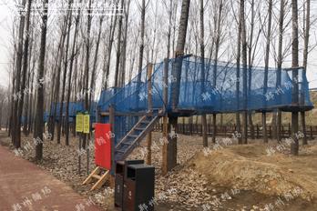 足球小镇树上探险乐园项目正式运营
